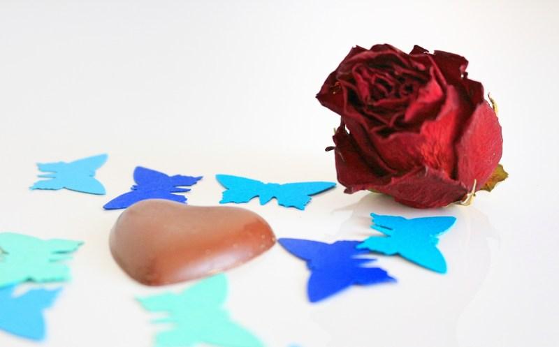 rose-herschokolade