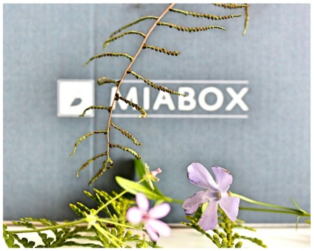 Miabox-April-Soulsister