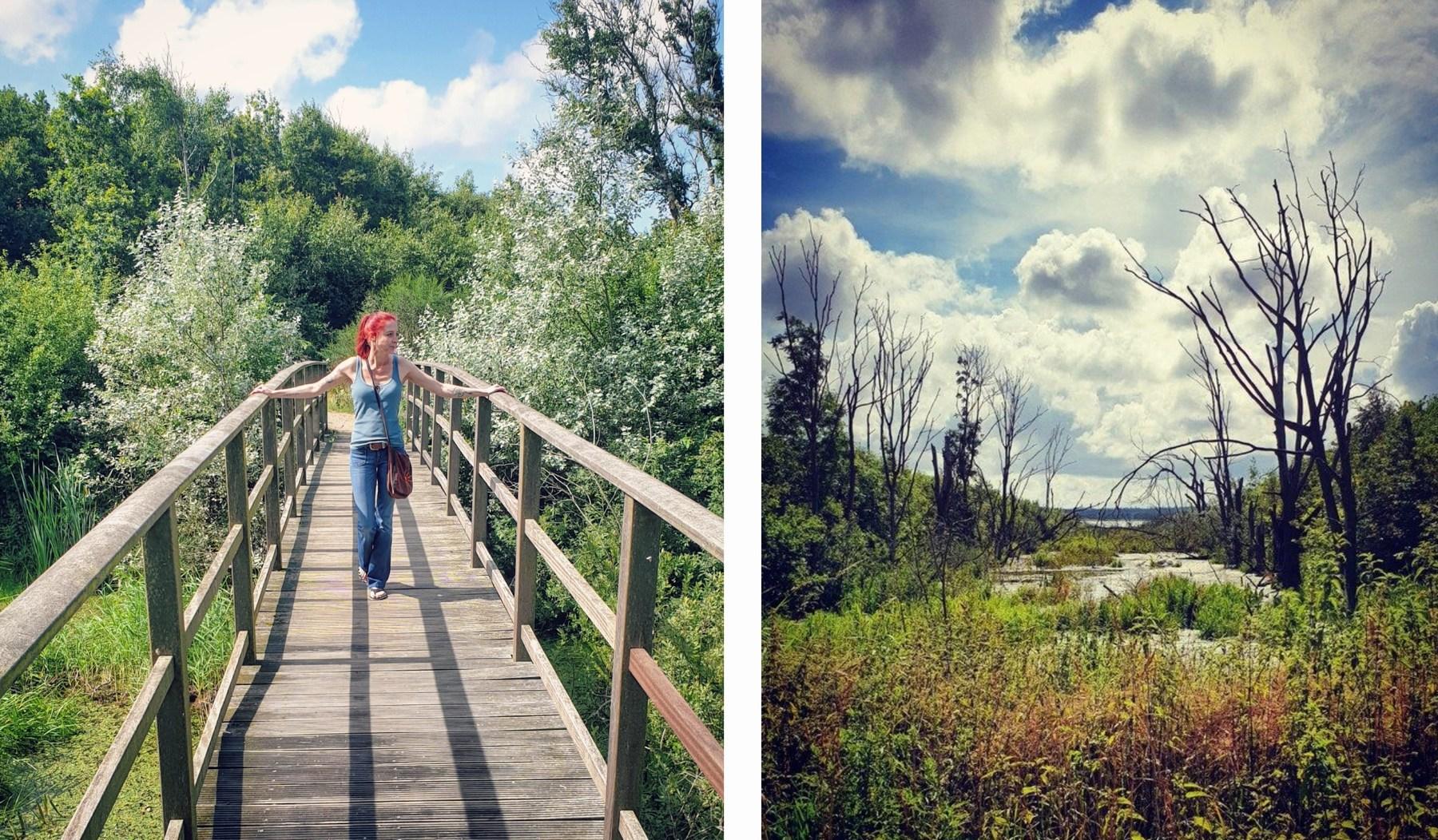 Filsø - Naturschutzgebiet